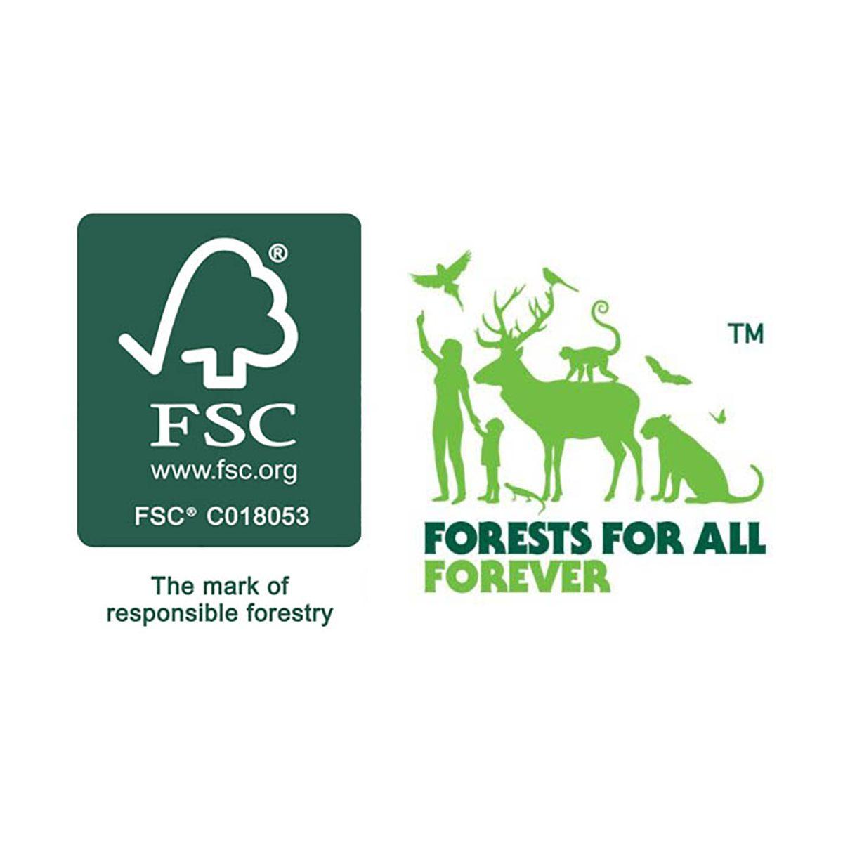 FSC-logo-1024x598-1-600x400_updated4